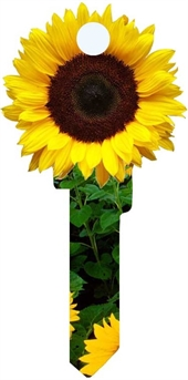 KW11 - 3D SUNFLOWER